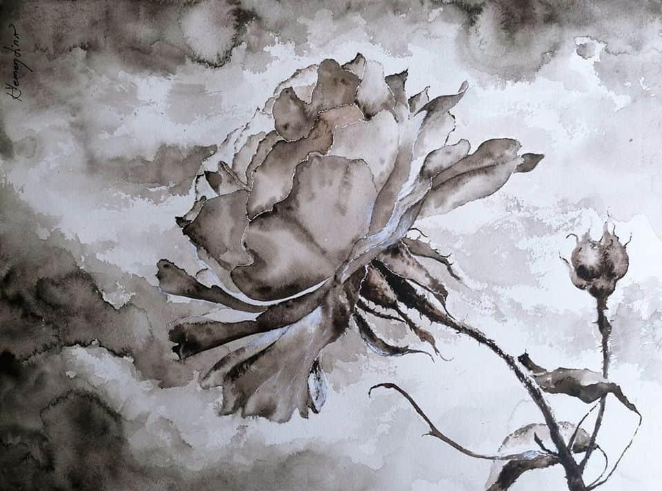 Самотата на розата